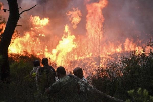 Ισχυρή πυρκαγιά στη Χίο!