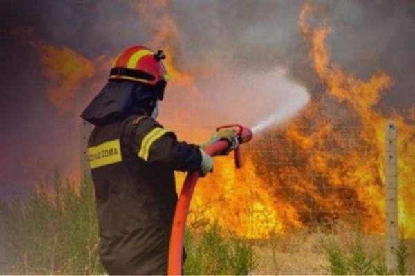 Πανικός στην Εύβοια - Σε ανεξέλεγκτη κατάσταση η φωτιά και νέα εστία στην Χαλκίδα