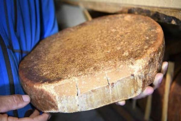 Βρέθηκε σε τάφο το αρχαιότερο τυρί στον κόσμο – Κρύβει ένα… θανάσιμο μυστικό!