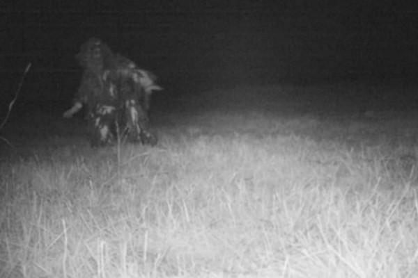 Κρυφή κάμερα κατέγραφε ένα σπάνιο λιοντάρι όταν ξαφνικά εμφανίστηκε...