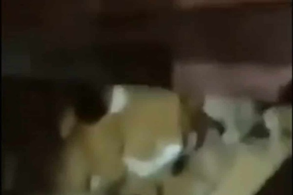 Απίστευτες στιγμές στη Βηρυτό: Κοριτσάκι 4 ετών διασώζεται κάτω από τα χαλάσματα