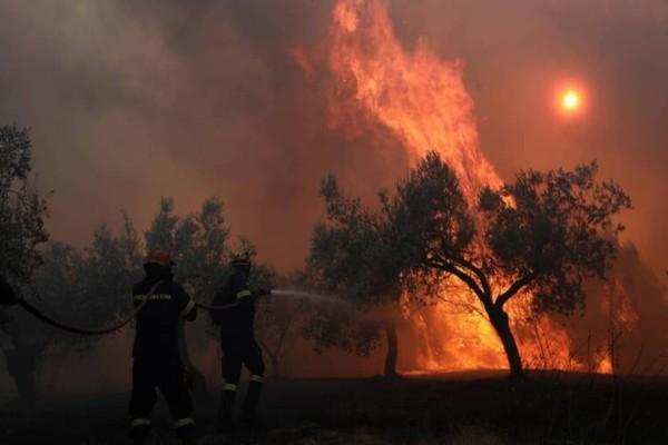 Φωτιά στην Νίκαια