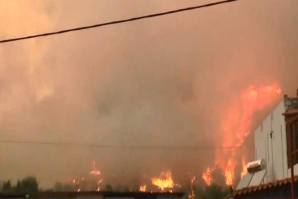 Φωτιά στην Πελλάνα Λακωνίας