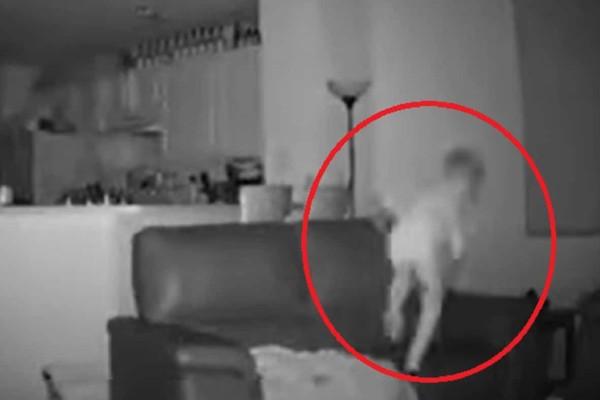 2 τα ξημερώματα... Πατέρας καταγράφει σε κάμερα την περίεργη συμπεριφορά του 6χρονου γιου του... Δείτε τι συνέβη (Video)