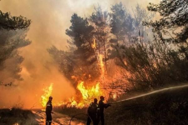 Ισχυρή πυρκαγιά στο Μαρκόπουλο, κοντά στο σπίτι του Big Brother!