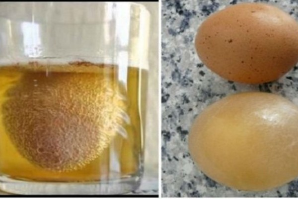 Παίρνει ένα αυγό και το βάζει μέσα σε ένα ποτήρι με μηλόξυδο - Όταν μάθετε το λόγο θα... εκπλαγείτε
