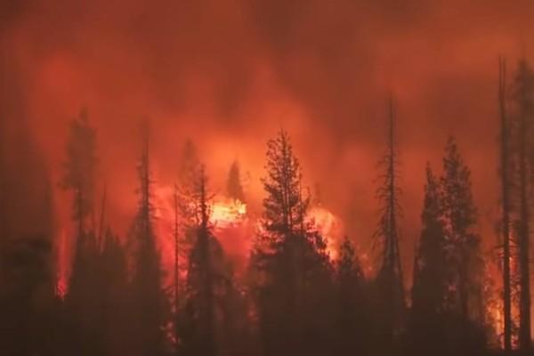 Σε κατάσταση εκτάκτου ανάγκης η Καλιφόρνια: Οι πυρκαγιές έχουν κάψει πάνω από δύο εκατ. στρέμματα