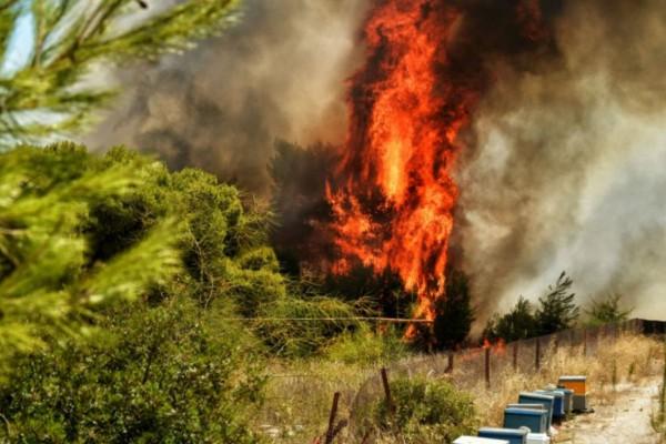 Μεγάλη φωτιά στο Καρπενήσι - Επιχειρούν και εναέρια μέσα