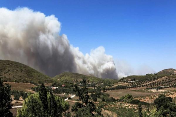 Φωτιά στην Κερατέα: Έφτασε στα σπίτια - Νέες εκκενώσεις οικισμών