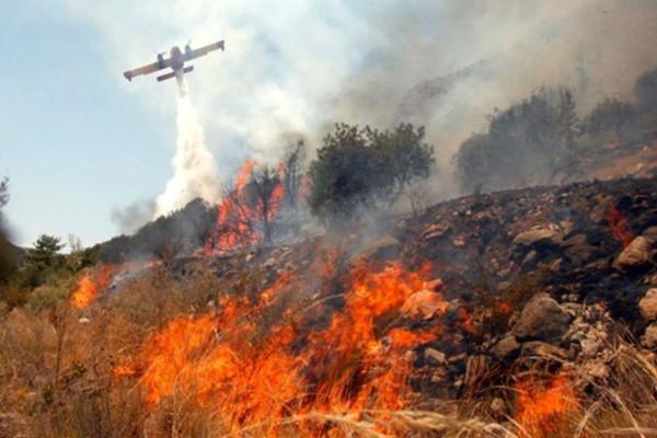 Φωτιά στη Λακωνία (photo)
