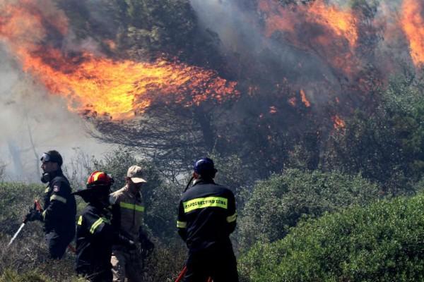 Φωτιά στην Πάρο