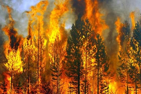 Φωτιά στην Δυτική Μάνη