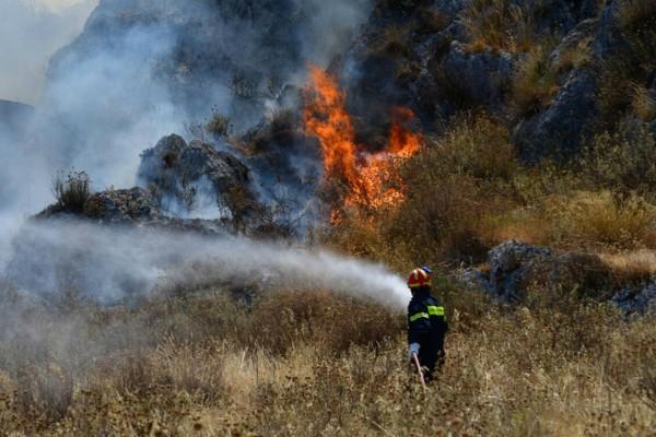 Σε εξέλιξη η πυρκαγιά στην Ηλεία - Εκκενώνεται ο οικισμός Δάφνη