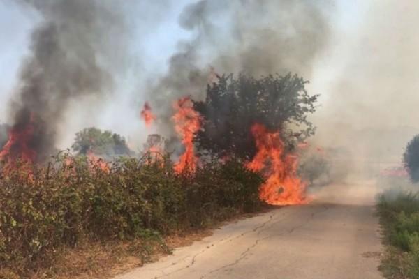Φωτιά στην Κερατέα: Εκκενώθηκε ο οικισμός Φέριζα και οικοτροφείο με 30 παιδιά