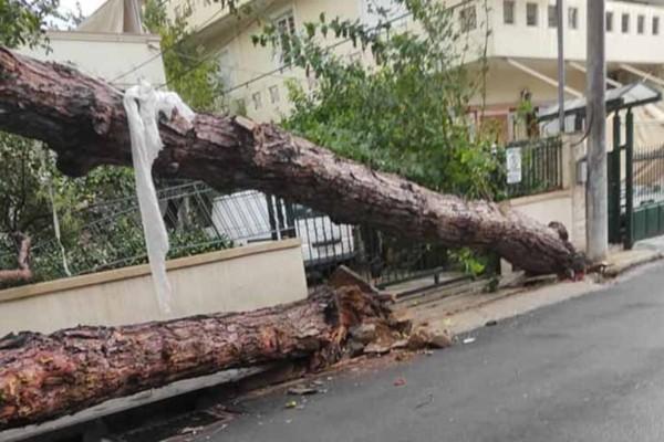 Νέο Ηράκλειο: Τεράστιες καταστροφές από την μεγάλη κακοκαιρία - Πέρασε ανεμοστρόβιλος και δεν
