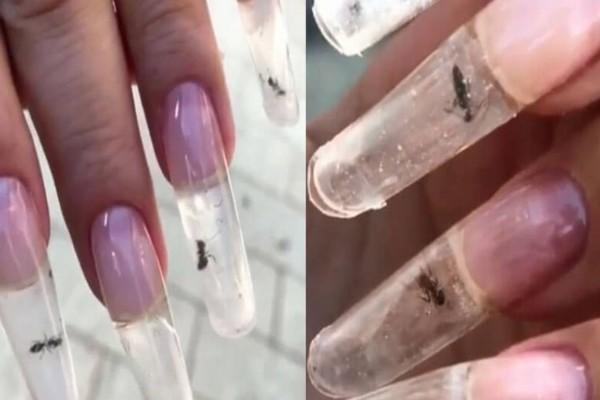 Μεγάλη προσοχή: Αν δείτε μυρμήγκια στα νύχια του μανικιούρ σας τότε…