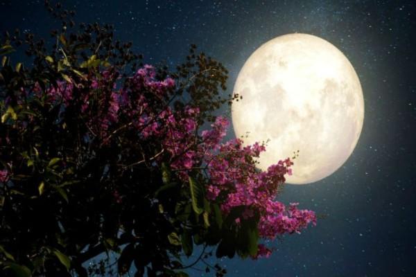Η μαγευτική πρώτη πανσέληνος του Οκτωβρίου μέσα από εντυπωσιακές εικόνες
