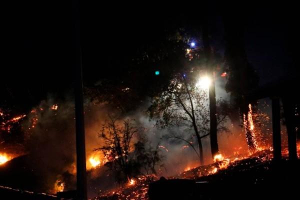 Νύχτα κόλαση στη Ζάκυνθο: Χιλιάδες στρέμματα έχουν γίνει στάχτη!
