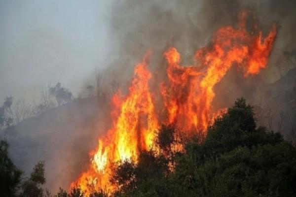 Φωτιά στη Μάνδρα