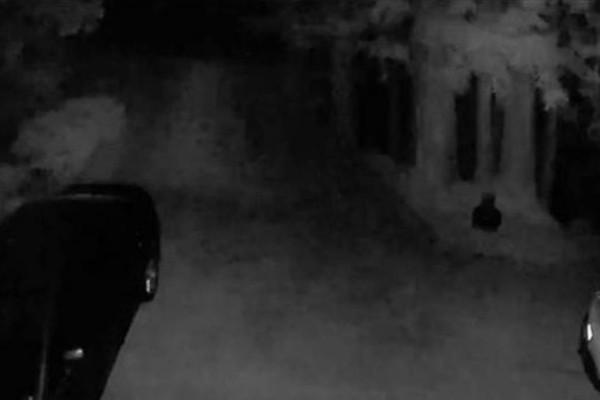 Τσέκαραν την κάμερα ασφαλείας στην αυλή τους - «Πάγωσαν» μ' αυτό που είδαν (Video)