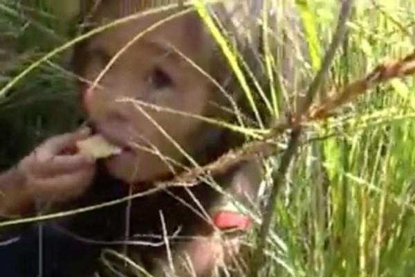 3χρονο κοριτσάκι περιπλανιόταν μόνο του σε δάσος της Σιβηρίας επί 11 μέρες - Όταν δείτε ποιος ήταν δίπλα της θα «παγώσετε»