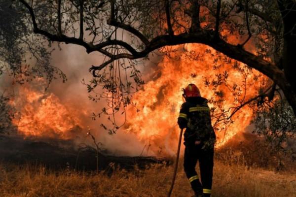 Μεγάλη φωτιά στα Μέγαρα Αττικής