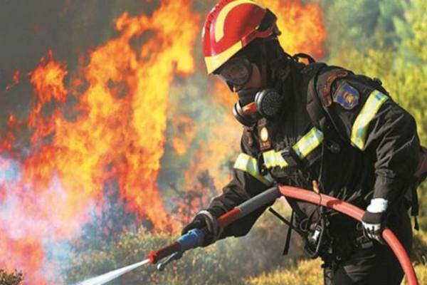 Μεγάλη φωτιά στην Κάρυστο