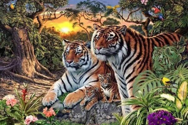 Το τεστ παρατηρητικότητας της CIA που πολλοί δεν τα κατάφεραν - Μπορείτε να βρείτε τις 16 τίγρεις;