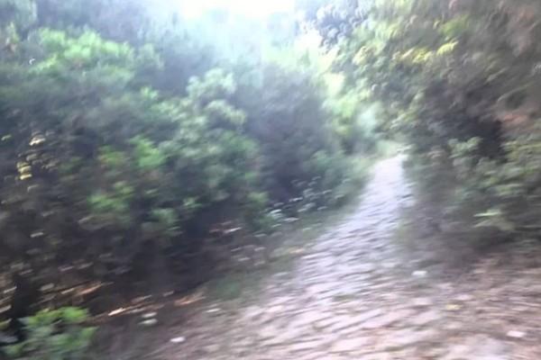 Ανατριχιαστική φωτογραφία: Εμφανίστηκαν άγγελοι στο Άγιο Όρος!