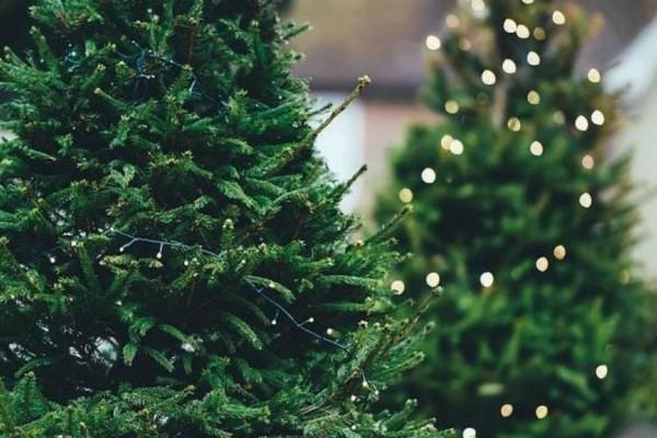 2+1 Χριστουγεννιάτικες ιδέες διακόσμησης για το σπίτι σας: Στολίδια που θα ξεχωρίσουν