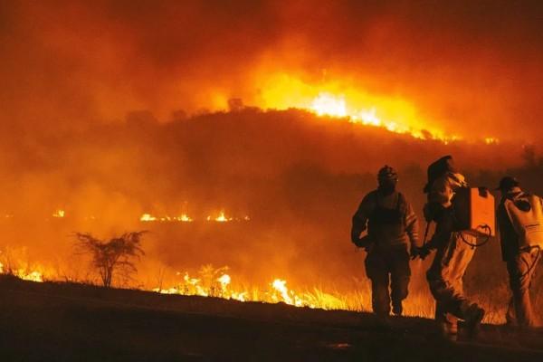 Συναγερμός στην Αργεντινή: Πυρκαγιά ξέσπασε στη νότια μεριά της χώρας - Πάνω από 60.000 στρέμματα έχουν γίνει στάχτη