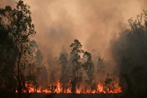 Συναγερμός στην Αυστραλία: Πυρκαγιά σαρώνει τη χώρα - Σε κίνδυνο ζωές και κατοικίες