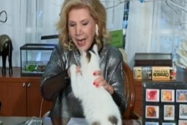 Γάτα επιτέθηκε στη Λίτσα Πατέρα on air! (Video)