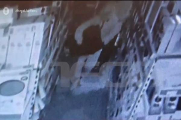 Ίλιον: Εισέβαλαν σε κλειστό κατάστημα και