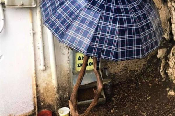 Σκιάθος: Έβαλαν ομπρέλα για να μη βρέχεται η ταΐστρα των αδέσποτων