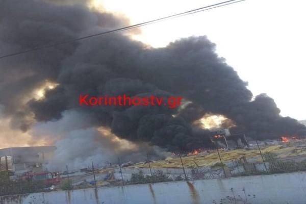 Φωτιά σε εργοστάσιο στο Ζευγολατιό - Φόβοι για έκρηξη (Video)