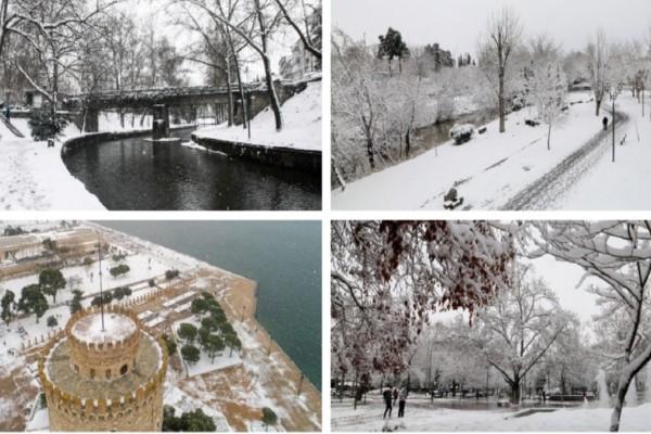 Η Μήδεια... ζωγράφισε! Στα «λευκά» ντύθηκε η χώρα - Μαγευτικές εικόνες από τα χιόνια (Video)