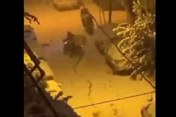 Απανθρωπιά: Ντελιβεράς ταλαιπωρείται μέσα στα χιόνια για να πάει την παραγγελία τύπου που δεν μπορούσε να βράσει ένα αυγό!
