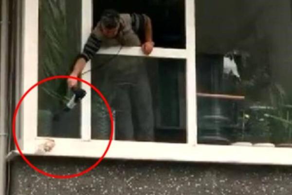 Χρησιμοποιεί στεγνωτήρα μαλλιών για να ζεστάνει ένα περιστέρι που τρέμει έξω από το παράθυρο