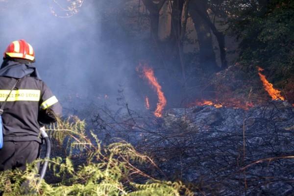 Κρήτη: Μεγάλη φωτιά ξέσπασε στη Ρογδιά