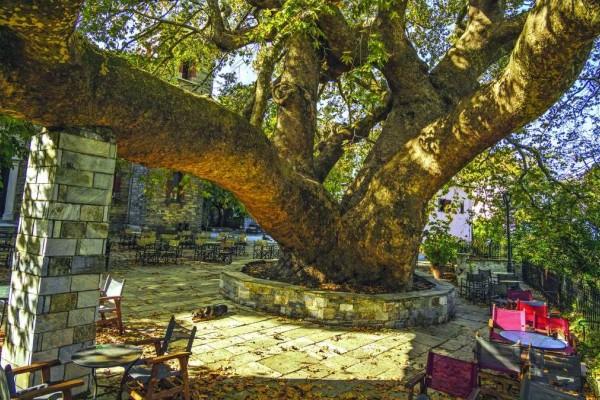 4 χωριά της Ελλάδας που συνδυάζουν βουνό και θάλασσα!