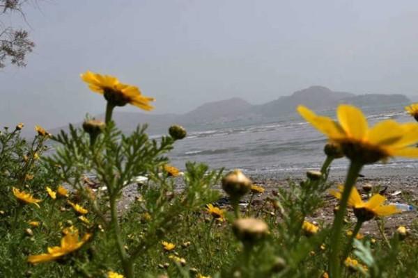Καιρός: Ανοιξιάτικες ξανά οι συνθήκες με άνοδο της θερμοκρασίας