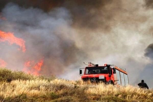 Μεγάλη πυρκαγιά στη Μεγαλόπολη