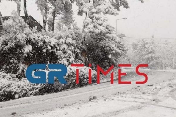 Χιονόπτωση στη Θάσο: Στα λευκά