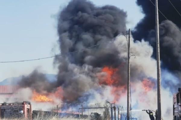 Συναγερμός στη Θεσσαλονίκη: Μεγάλη πυρκαγιά στην Θέρμη (Video)