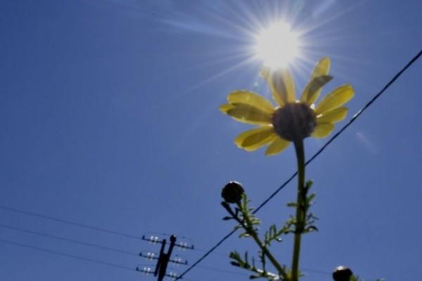 Καιρός σήμερα: Άνοδος της θερμοκρασίας - Πού θα σημειωθούν τοπικές βροχές;