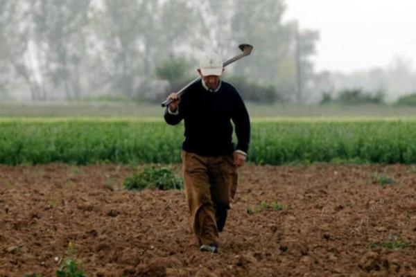 Παντρεύτηκε ένας γέρος αγρότης μια νεαρή: Το ανέκδοτο της ημέρας (22/04)