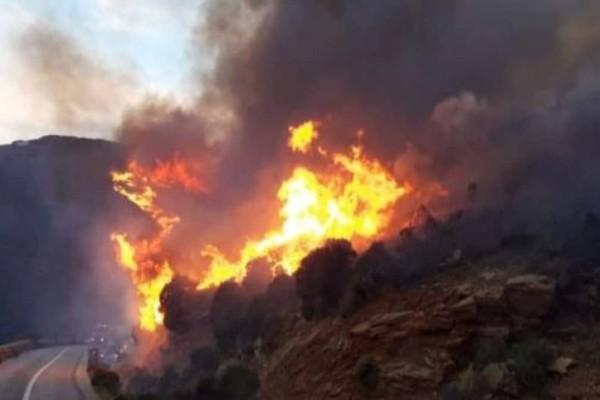 Άνδρος - Φωτιά: Μαίνεται το πύρινο μέτωπο - Ενισχύθηκαν οι πυροσβεστικές δυνάμεις (Video)
