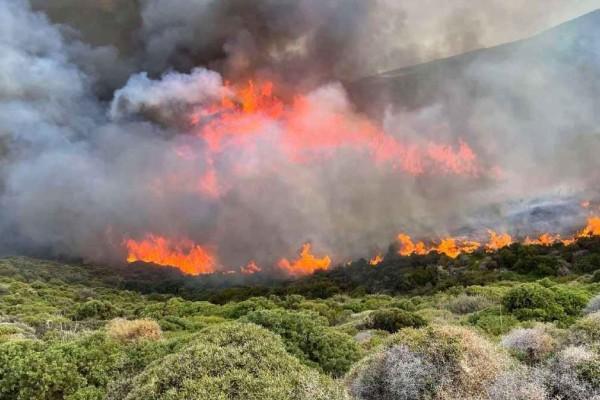 Φωτιά στην Άνδρο: Έρευνες για τα αίτια της πυρκαγιάς - Εκεί στρέφονται οι υποψίες