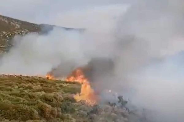 Πυρκαγιά στην Άνδρο: Εκκενώθηκαν δύο χωριά - Ανεξέλεγκτη η κατάσταση